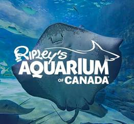 Image result for Casa Loma和Ripley's加拿大水族館