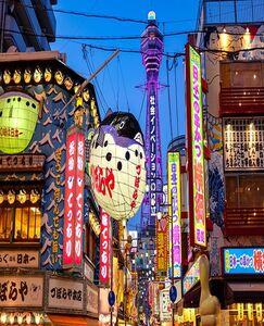 大阪出發二日遊