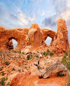 黃石公園-小巨環-錫安-西峽谷